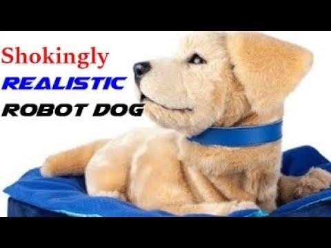 shockingly realistic Robot Dog