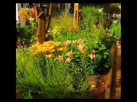 Jardiner a plantas decoraci n instalaci n de c sped - Decoracion de jardineria ...