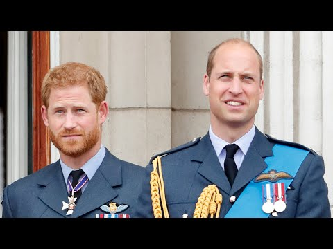 Prince-Harry-and-Prince-William-Have-Reconnected-and-Talk-'Relatively-Regularly-Exclusive