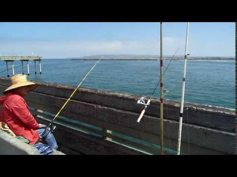 Fishermen fish off Ocean Beach Pier end to celebrate 50th Anniversary!