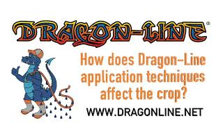 Keith Watson Talks about Dragon Line