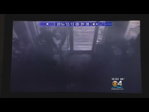 Smash & Grab Jewelry Store Heist Caught On Camera