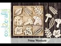 Prima CHA Special Feature - Wood Embellishments & Resist Canvas Alphabet