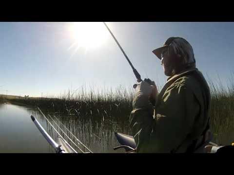 Pelican Lake Frog Fishin Fun