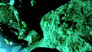 Ginnie Springs Cavern Dive 3