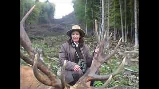Hunting in Bulgaria