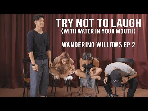 TRY NOT TO LAUGH (WITH WATER IN YOUR MOUTH) - Wandering Willows EP 2