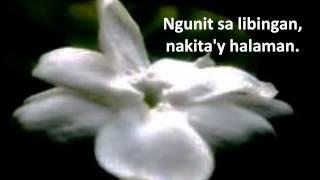 Mabuhay Singers - Sampaguita with Lyrics