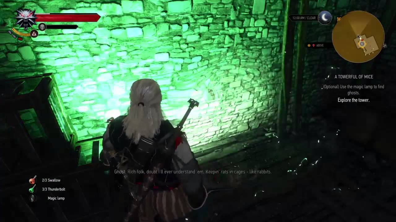 The Witcher 3: Wild Hunt   A Towerful Of Mice - Explore The Tower ...