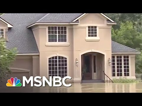 Federal Flood Insurance Made Hurricane Harvey Even Worse   All In   MSNBC
