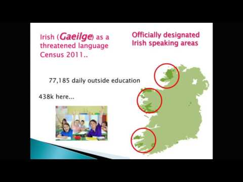 Input and experience in minority language acquisition - the value of the Irish case study
