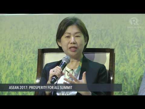 ASEAN 2017: The Mentorship for Entrepreneurs Network