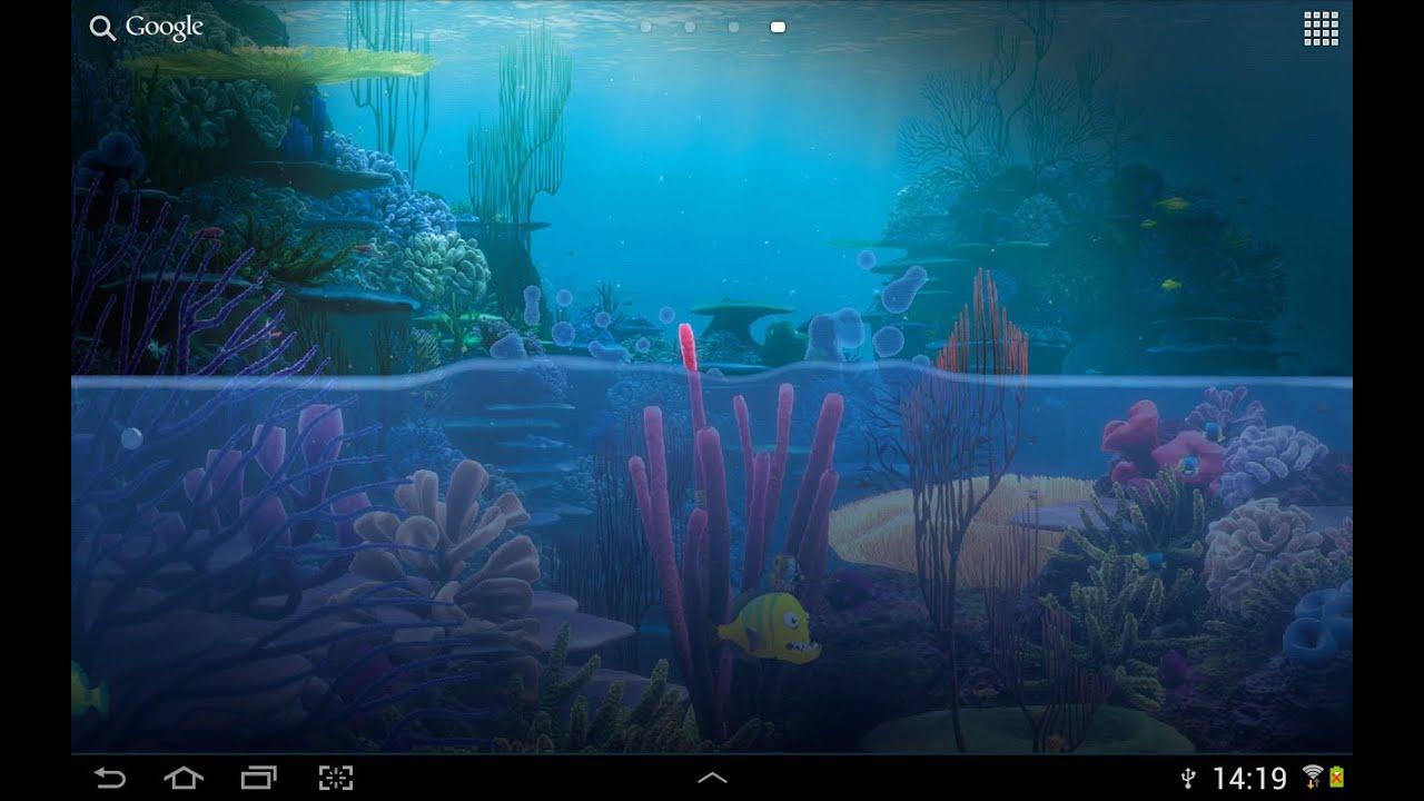Virtual fish tank aquarium google - Virtual Fish Tank Aquarium Google