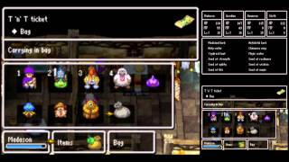 Dragon Quest V [DS] Playthrough #039, Zoomingale: The Professor's Request