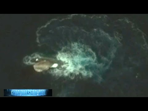 1000 Foot SQUID VS MEGA Orca Whale ATTACK Antarctic Sea!? Deception Island OR UFO CRASH?2016