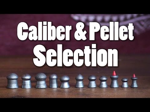 Caliber & Pellet Selection | AB101 Pt. 7