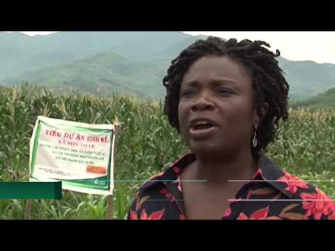 Central Highlands Poverty Reduction Project Introduction