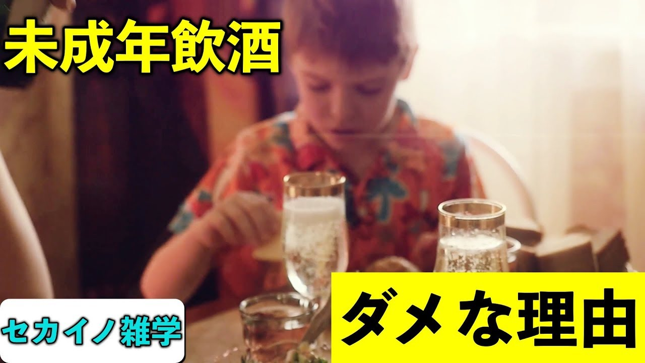 【衝撃】未成年飲酒が危険な理由3選 - YouTube