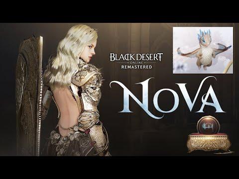 BDO- New Class Nova and Free T4 Pet Ice Dragon