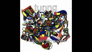 Tunng -Bricks ( Dntel remix )