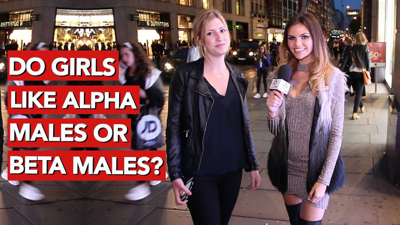 Do Girls Like Alpha Males Or Beta Males - Youtube-7741