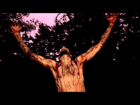 Blood Mortized - Salvation