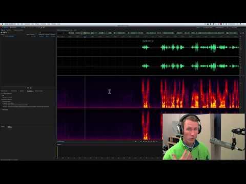 Sound for Video Session: Richer Dialogue, Reporter's Mics, Lip Smacks & More