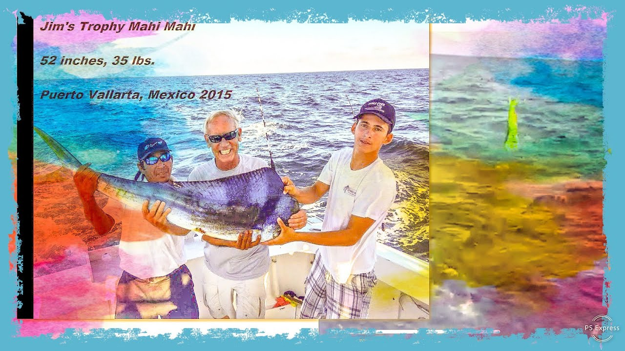 Deep sea fishing puerto vallarta mexico filmed live for Fishing puerto vallarta