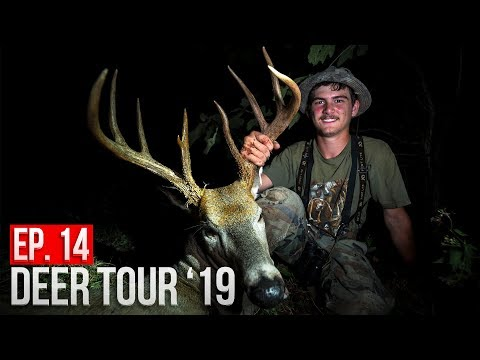 TED'S MISSOURI BUCK with a BOW! - Public Land Deer Hunting!