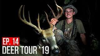 Gambar cover TED'S MISSOURI BUCK with a BOW! - Public Land Deer Hunting!