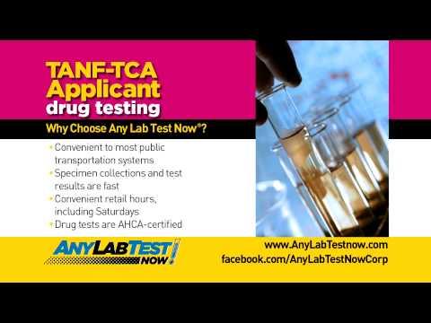 any-lab-test-now---florida-drug-testing