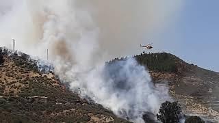 Forest fire Gran Canaria 2019 Artenara