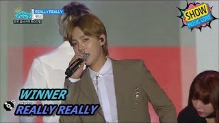 [HOT] WINNER - REALLY REALLY, 위너 - 릴리릴리 Show Music core 20170729