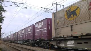 Video 貨物列車1051レ EF210-145 《イレギュラーな満載編成!》 14.5.4 download MP3, 3GP, MP4, WEBM, AVI, FLV Desember 2017