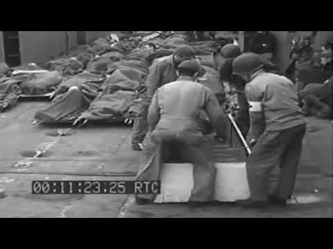 INVASION OF  FRANCE: EVACUATION OF CASUALTIES - 06-11-1944 - NO SOUND