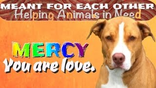 Mercy, You Are Love. ~ Meant For Each Other (mfeo) Video