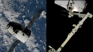 SpaceX CRS-19 Dragon capture