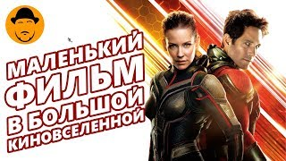ЧЕЛОВЕК-МУРАВЕЙ И ОСА – Мнение О Фильме