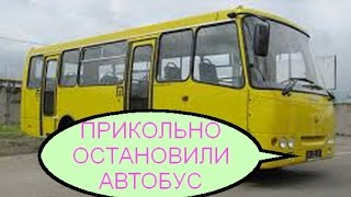 Прикольно остановили автобус. Для чего? Весело!