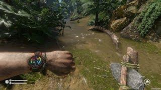 Основы выживания в игре Green hell: Как сохраняться, где добыть воду и трут?