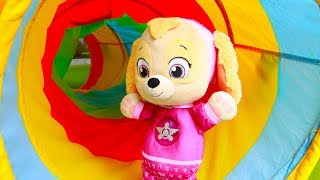 Paw Patrol Skye Playground Adventure in Maze