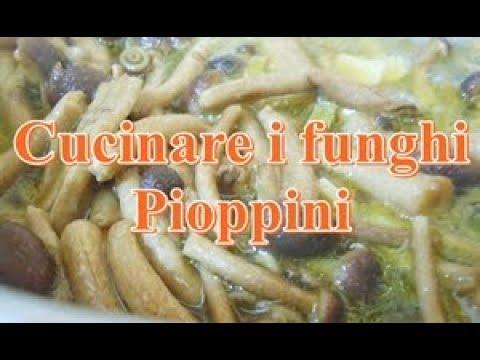 Funghi in padella, ricetta contorno - Nella cucina di ...