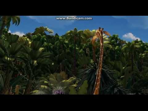 Madagascar San Diego beach sense clip 1