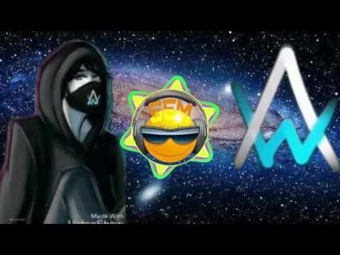 Alan Walker-Big Universe