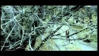 Смотреть клип Hripsime Hakobyan - Du Indz Nerir