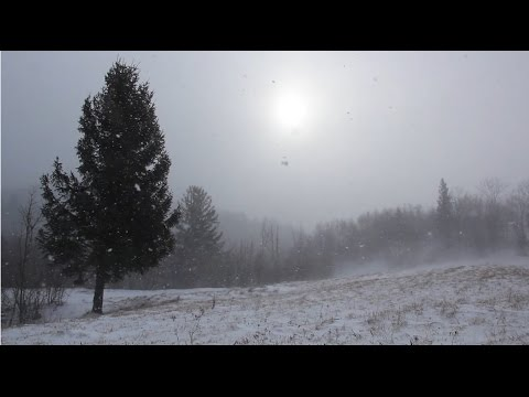 Relaxing Winter Wind 1 Hour / Snow Storm With Strong Wind