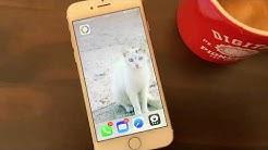 Auslesen des Personalausweises über NFC des iPhones
