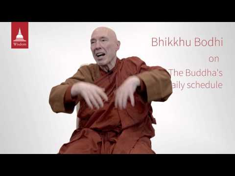 A Day in the Life of the Buddha