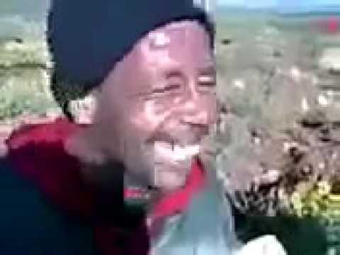 Hhhh Algérie