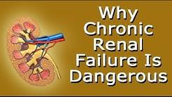 hqdefault - Untreated Chronic Kidney Disease